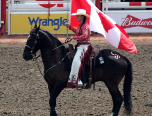 Calgary Stampede – Packages for  2022